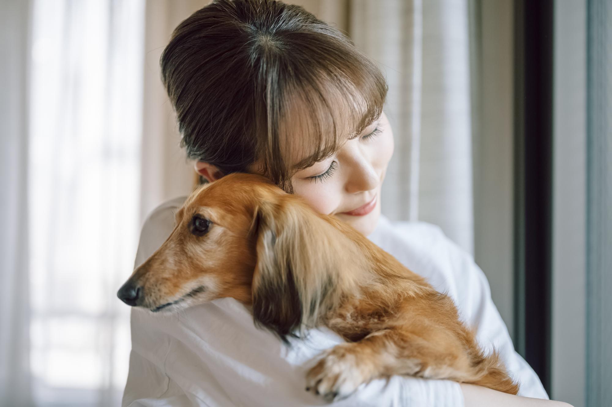 引越しで飼い犬の移動はどうする?新居への慣れさせ方や登録方法も